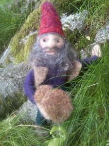 Dwarf with mushrooms